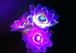 Business idea - luminous flowers